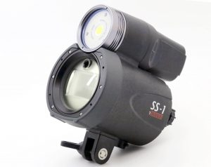 Diving light that has both LED light and flash
